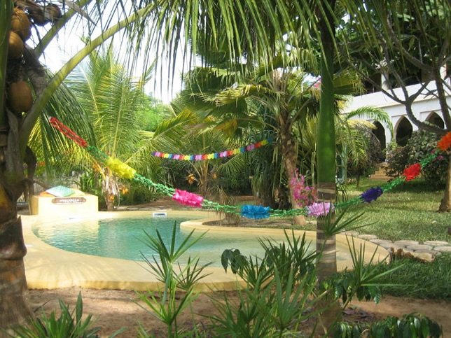 Banana House, Lamu, swimming pool